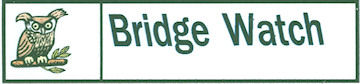 bridge watch logo