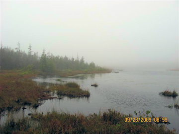 Carabou Bog, Fundy NP. Photo by the Keatings September 23, 2009