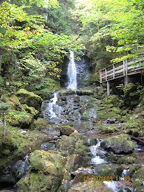 Dickson Falls. Photo by the Keatings September 23, 2009